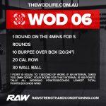 RAW-TWL-WOD-06