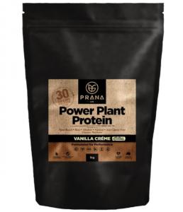 vegetarian protein powder